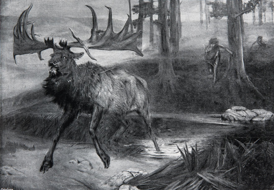 Irish-Elk-Drawing