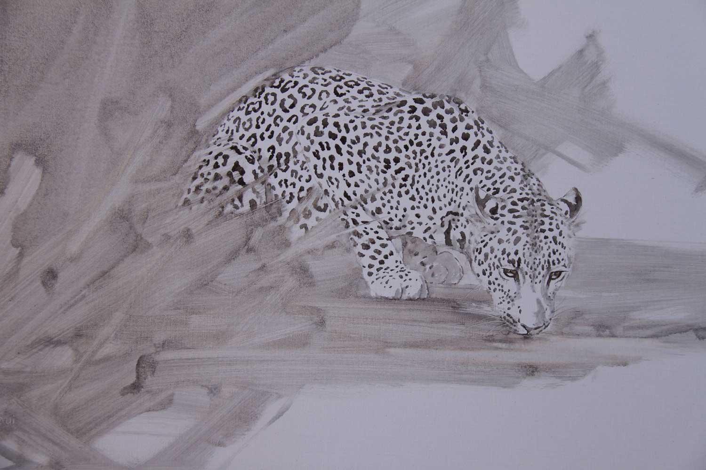 Leopard-by-M-Ghaui
