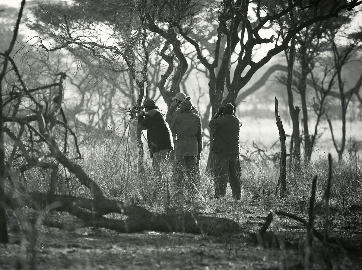 Hunt Stalk Tanzania
