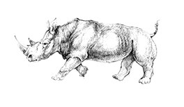 Rhino-Lantuch