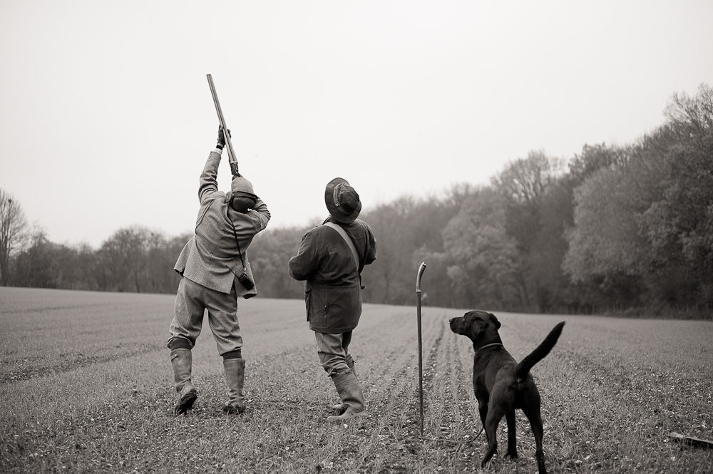 Pheasant Shoot ByBrett Photography