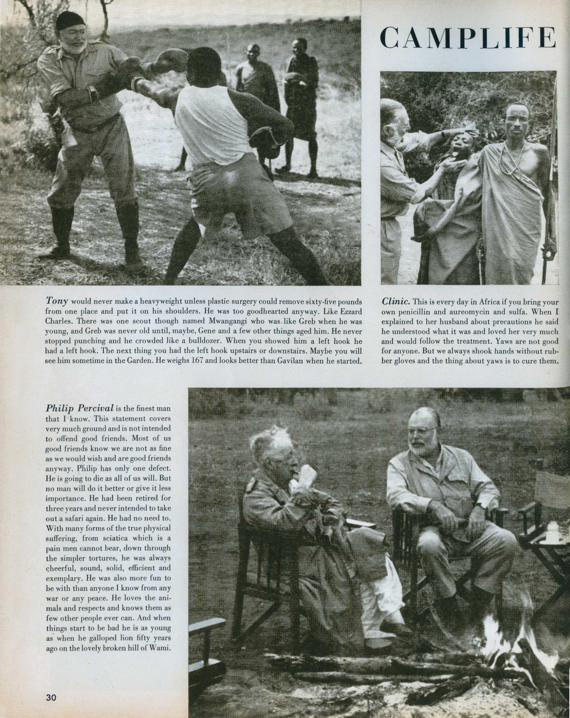 Look Magazine- Safari 12