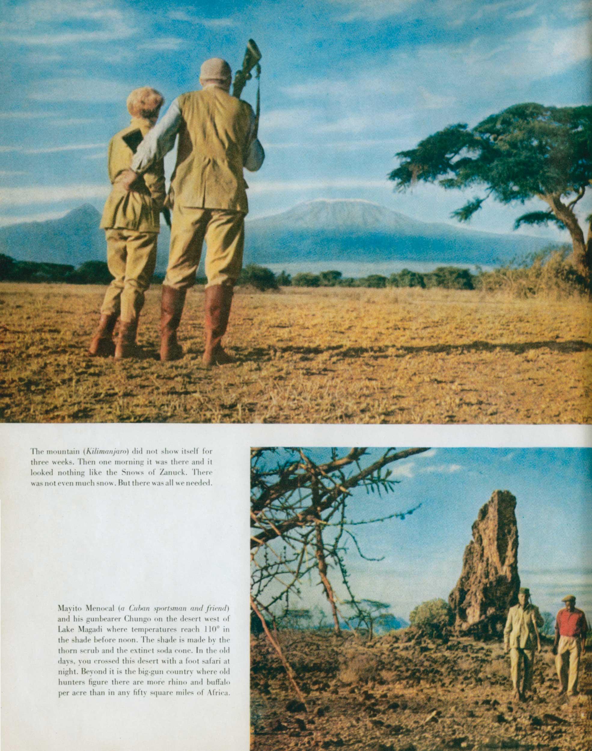 Look Mag. Safari 4