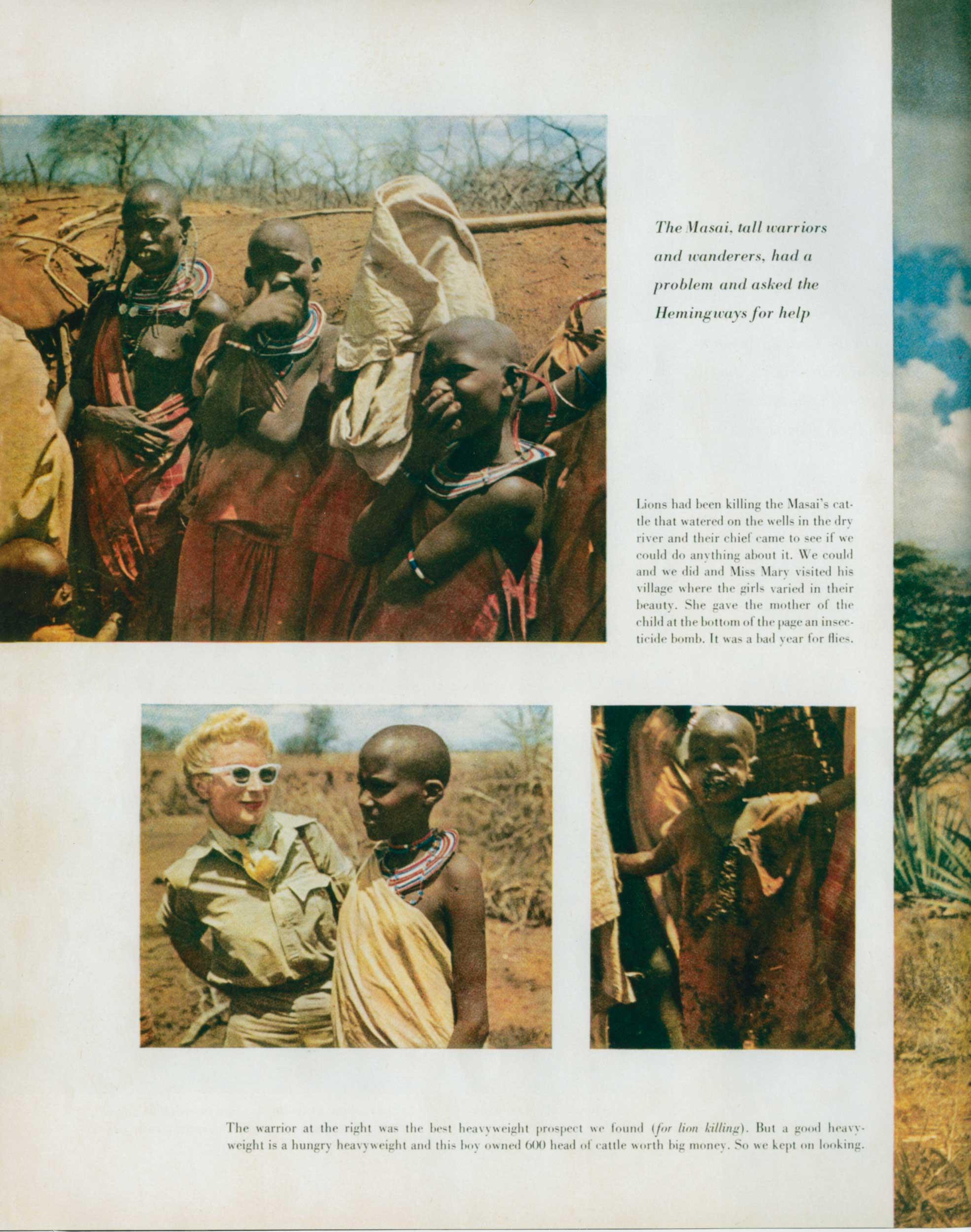 Look Mag. Safari 6
