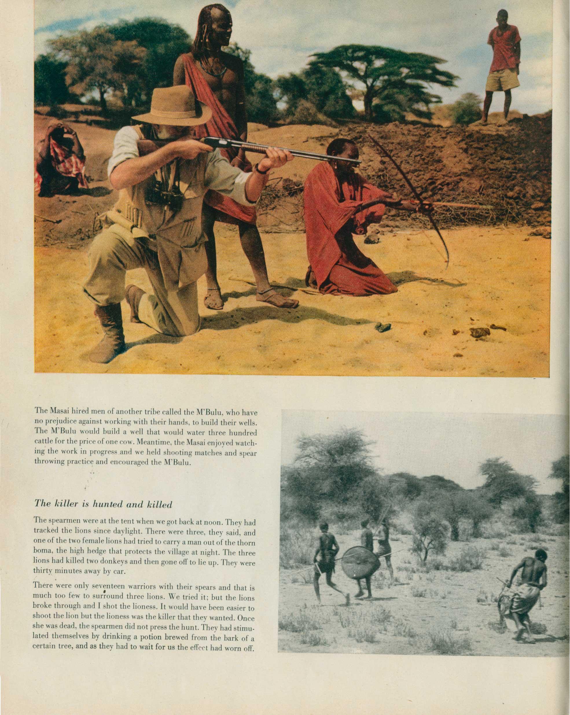 Look Magazine-Safari 8