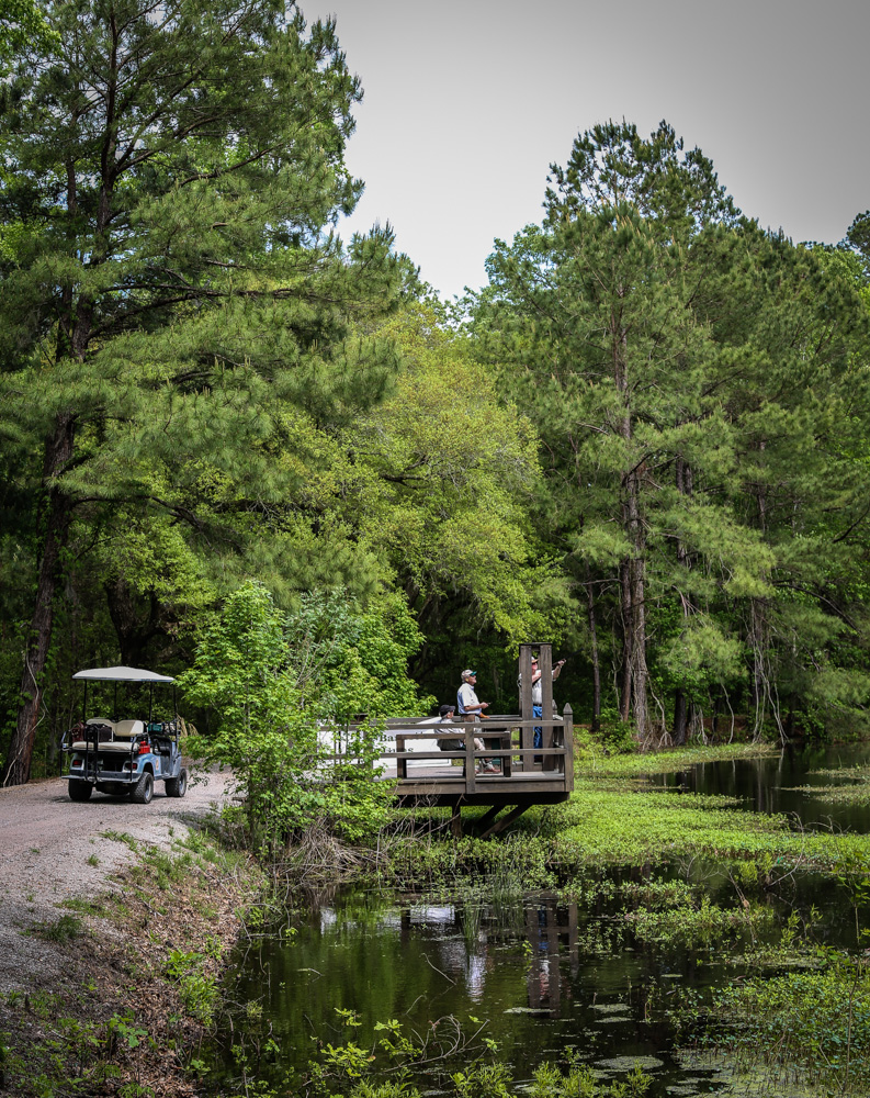 Sporting Clays at Bray's Island
