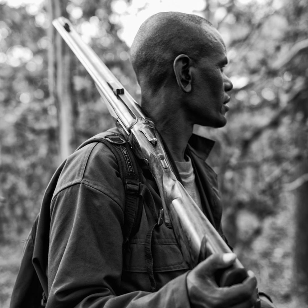 Westley Richards 500, Tracker, gun bearer, safari
