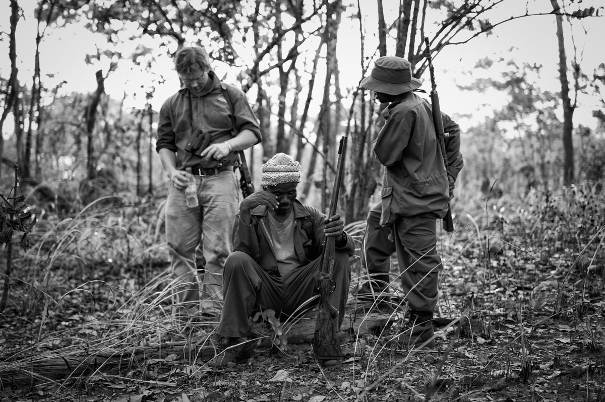 Safari, Resting, Westley Richards