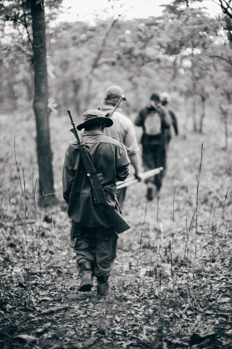 Safari, Hunting, Westley Richards, Tanbzania