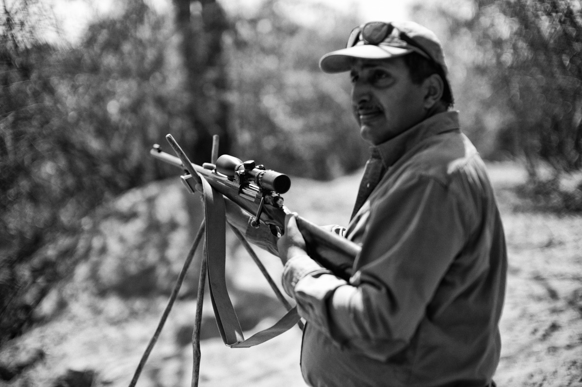 Safari, Westley Richards