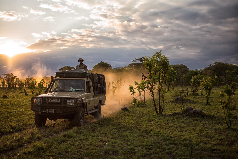 Safari, Westley Richards, Tanzania