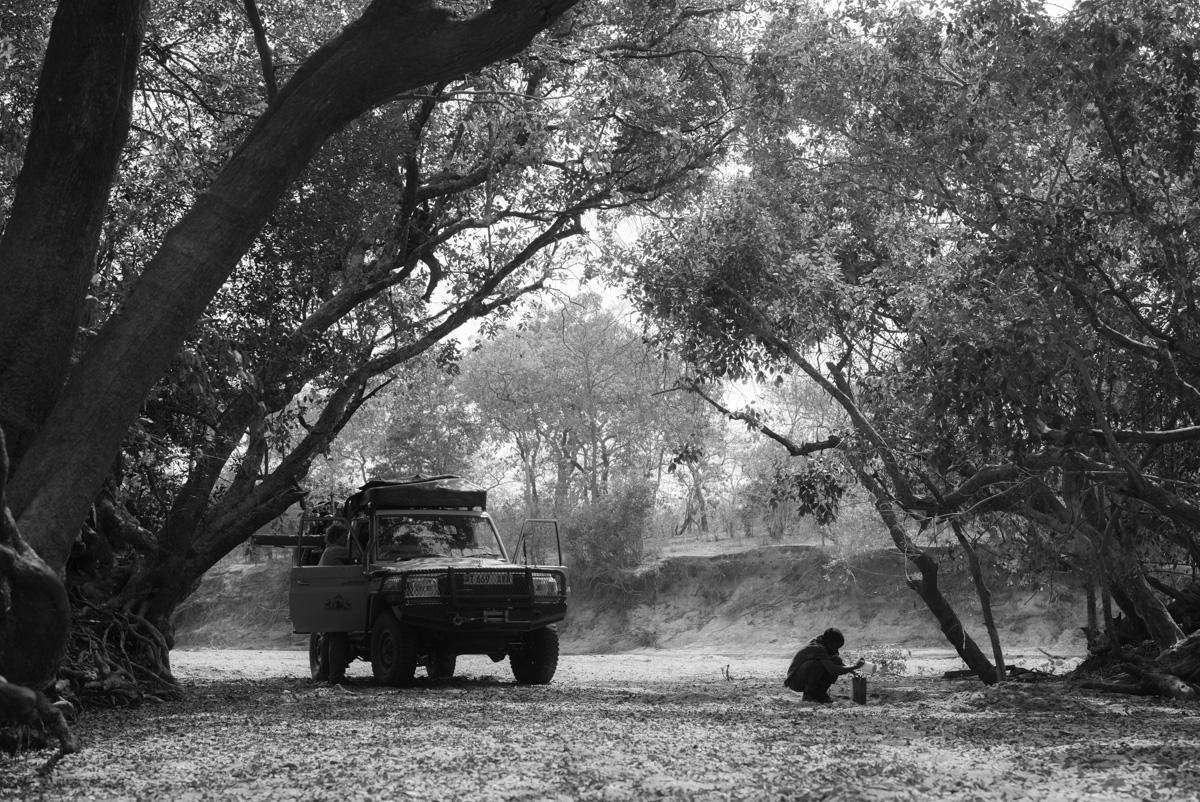 Water, River Bed, Safari,Tanzania