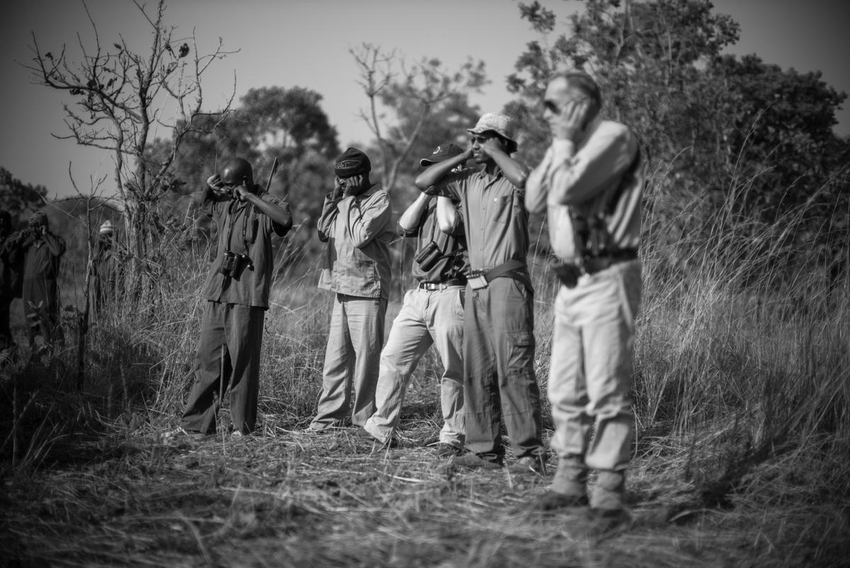 Safari, Westley Richards, zero rifles