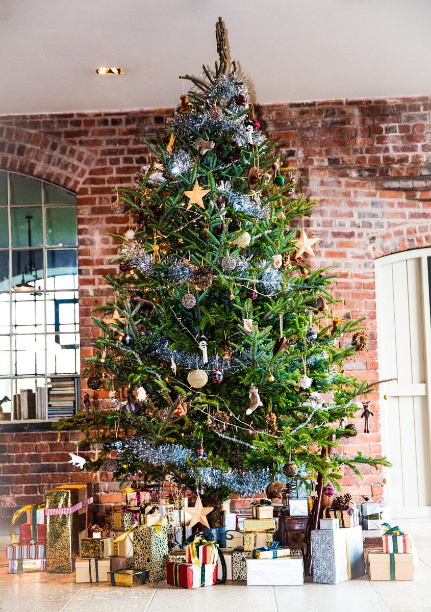 The Explora, Christmas Tree, Westley Richards