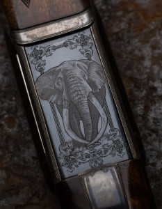 Bull Elephant on WR rifle