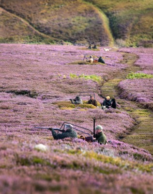 2015 Grouse Season Report by Mark Osborne.