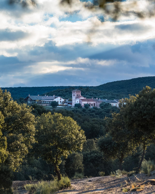 Monteria in Spain