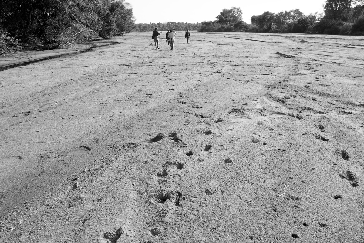Tracking a dry riverbed in remote Mozambique