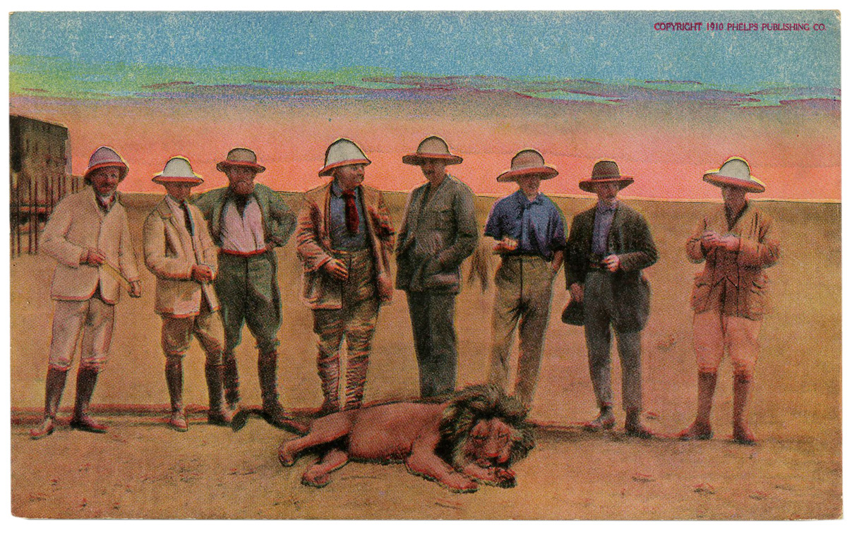 Some Vintage Safari Postcards Circa 1910