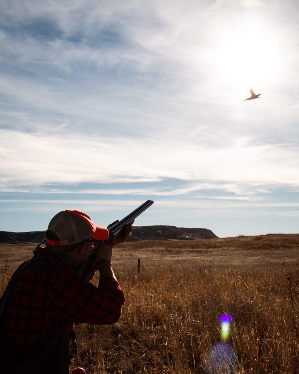 South Dakota's Hidden Gem