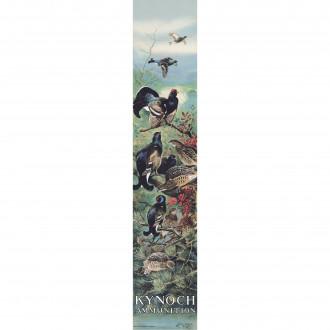 Westley Richards Kynoch Poster - Black Grouse