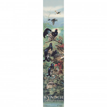 Kynoch Poster - Black Grouse