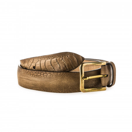 Post & Co. Men's Ostrich Leather Belt in Corrosione