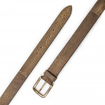 Men's Stingray Belt in Brown