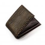 Python Wallet in Forest