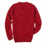 Rora Cashmere V neck Sweater in Rage